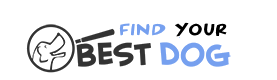 Find Your Best Dog